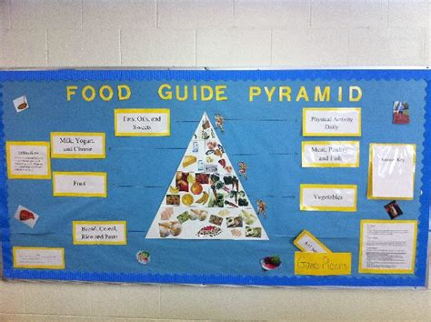 does room and board include food pec bulletin boards for physical education