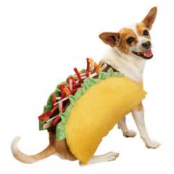 Dog Gift Baskets Tails Or Treats Taco Bar Lunch