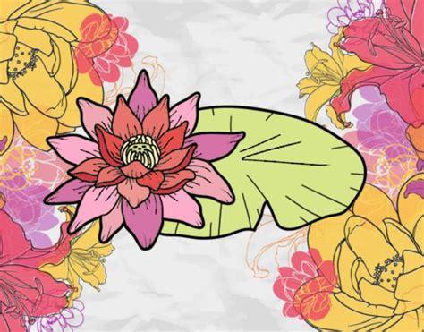 disegno fiori di loto disegno una fiore di loto colorato da utente non