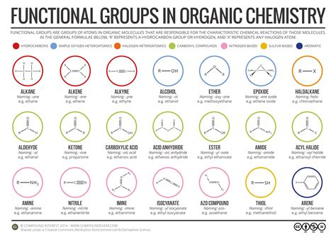 What Is An Organic Compound Functional Groups In Organic Chemistry Infographic