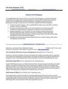 12 cfo resume objective riez sle resumes riez sle resumes pinterest sle resume chief financial officer resume udgereport821 web fc2 com