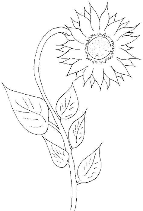 Ausmalbilder, Malvorlagen ? Sonnenblume kostenlos zum