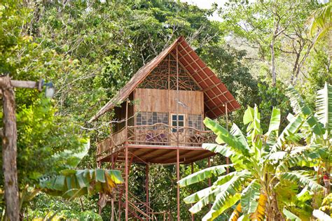 tree houses around the world 20 epic tree houses from around the world