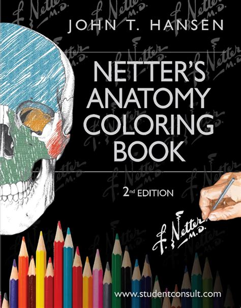 anatomy 2nd edition books calam 233 o netter s anatomy coloring book