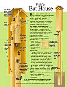 Plans For Bat Houses Illustration By Olliver Reprinted Withpermission From Nsta Publications Nov Dec 1998