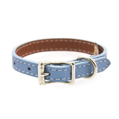 light blue dog collar tuscan leather dog collar by auburn leather light blue