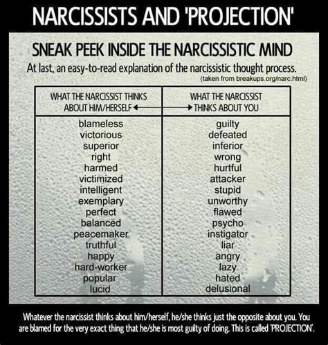 the crazy making behavior of a narcissist lisa e scott 2442 best narcissist abuse images on pinterest
