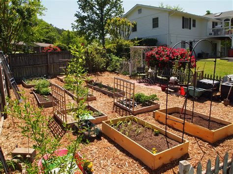backyard garden bed ideas small backyard vegetable home garden with diy wood raised