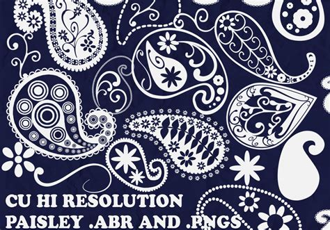 pattern brushes for photoshop cs3 free download funky paisley brushes free photoshop brushes at brusheezy