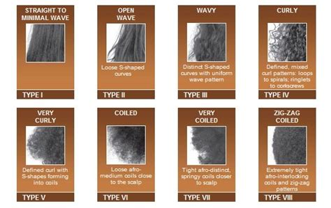Hair Types Chart For Black by Black Hair Types Discover American Hair Typing