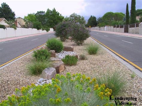 southwest median landscaping idea garden drought