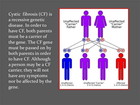 cystic fibrosis research paper the about cystic fibrosis
