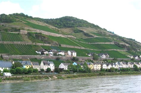 boat tour rhine river 17 best images about rhine river boat tours and others on