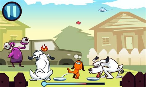 what to do when dog pees in house pee pee dog 1 0 apk