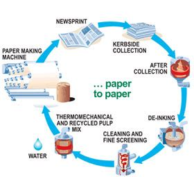 What Can We Make With Waste Paper - everyday chemistry how many times can we recycle one