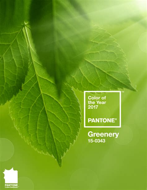 greenery code color of the year 2017 pantone color of the year 2017