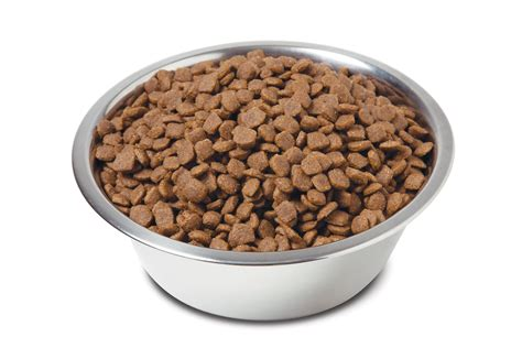 grain natural super premium dog food introduced