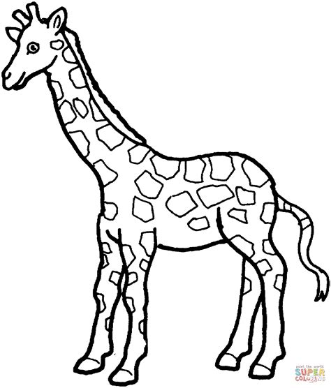 printable coloring pages giraffe giraffe 7 coloring page free printable coloring pages