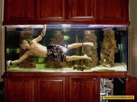 Lu Tl Untuk Aquascape limpando seu aqu 225