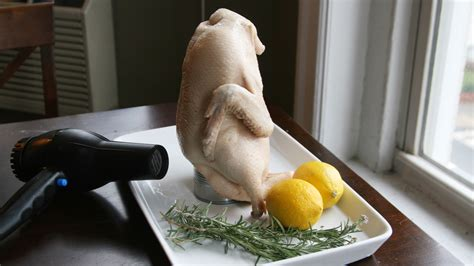 Hair Dryer Duck hair dryer cooking from s mores to crispy duck ncpr news