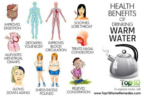 can you drink hot water 10 health benefits of drinking warm water top 10 home