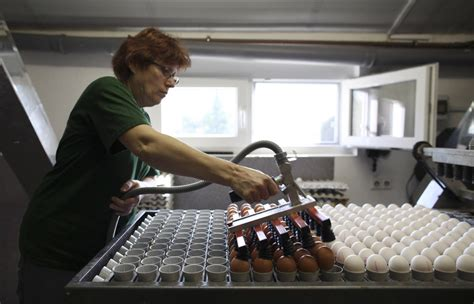 the egg factory order eggs easter egg factory works around the clock to meet demand