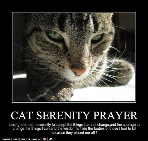 Serenity Prayer Meme - serenity prayer meme 28 images 25 best memes about the