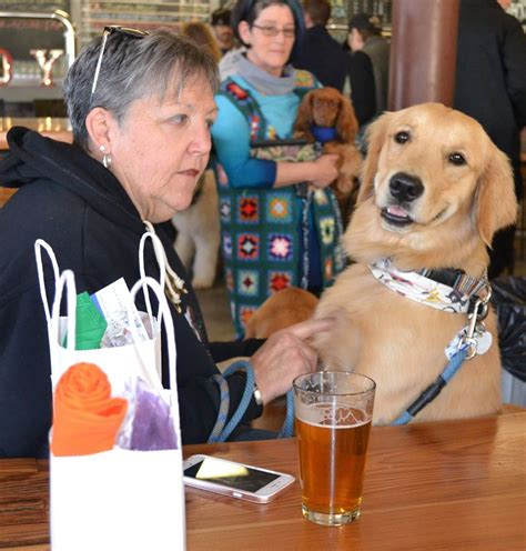 friendly breweries friendly breweries and your beloved bow wow tripswithpets