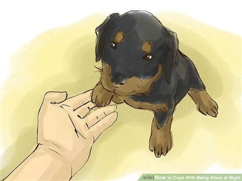 how to your rottweiler puppy with simple commands how to cope with being alone at 14 steps with pictures