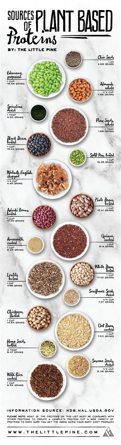 s proteine totali plant based protein sources protein charts and dr who