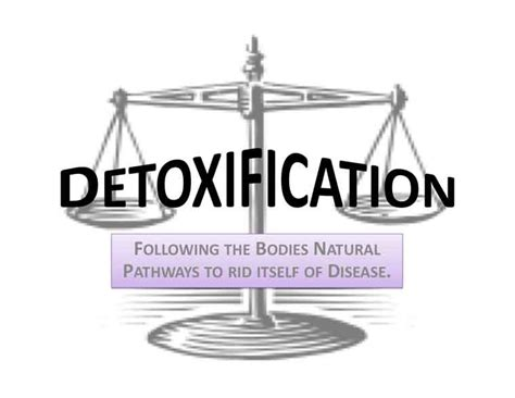 From To Purpose Detoxing by Ta Detox Diet Detoxification St Petersburg