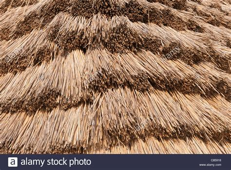 straw thatched roof thatched roof and bronze age style dwelling with timber