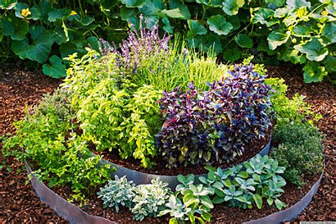 Raised Garden Bed Planting Ideas 10 Raised Bed Garden Ideas Huffpost