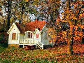 tiny house wallpaper wallpapersafari