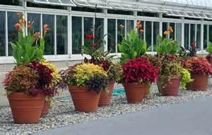 Patio Arrangements Outdoor Potted Plant Arrangements Potted Plant