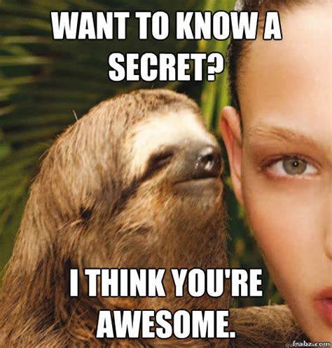 Awesome Meme - awesome sloth memes