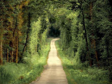 la camino plus imagen gratis caminos