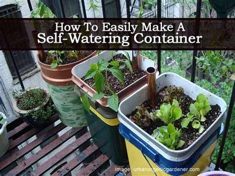 How To Make Self Watering Planter by Pin By Plant Care Today On Gardening