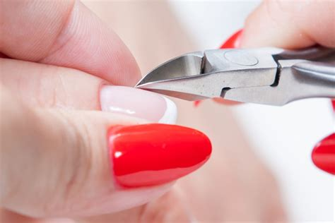 dead nail bed how to use cuticle nippers your beauty 411