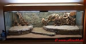 aquarium terrasse bodengrundgestaltung