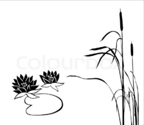 coloring page of cattails cattails coloring page www imgkid com the image kid