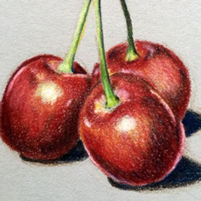 colored cherries live lessons thevirtualinstructor members