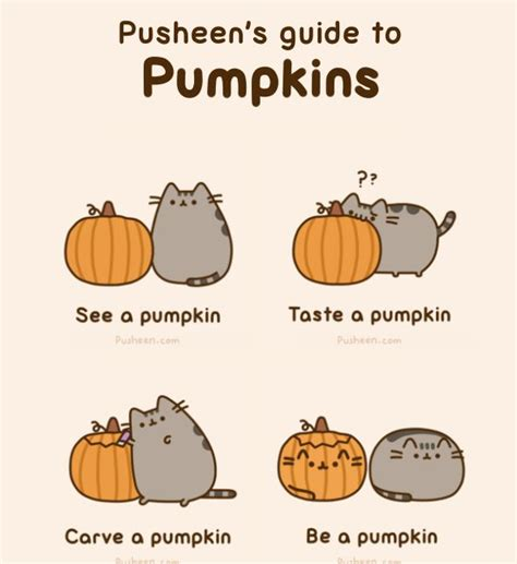 love pusheen the cat the cutest things in the world