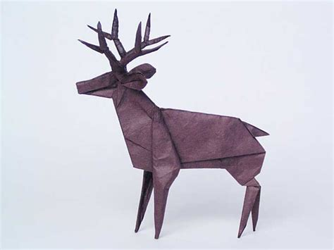 How To Make A Paper Deer - este f 237 sico utiliza f 243 rmulas matem 225 ticas para crear las