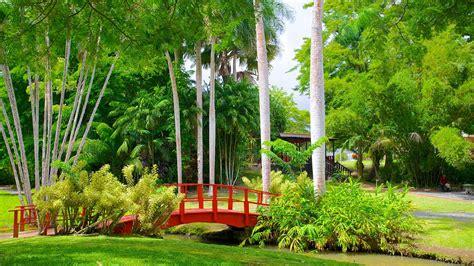 Vacation Home Rentals In Puerto Rico - jardin botanico in san juan expedia