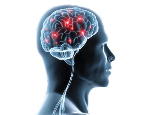best neurology journals neurology autos post