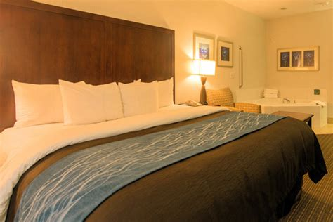comfort inn suites portland oregon comfort inn suites portland international airport