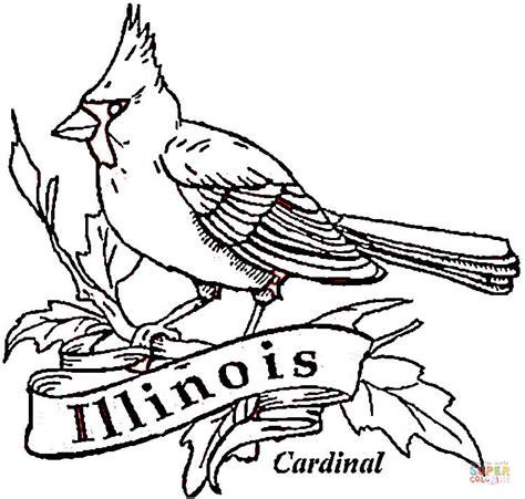 cardinal bird of illinois coloring page free printable