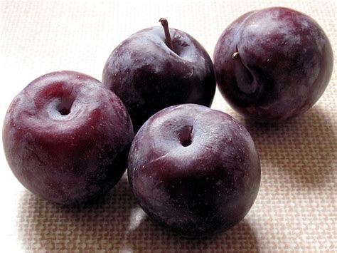 fresh plum mike isaac news allthingsd