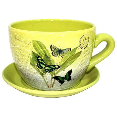terracotta tea cup and saucer shaped garden patio flower